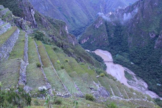 Peru 684